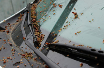следы от тополя на машине